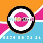 web-logo-Izbiram-sebe-si